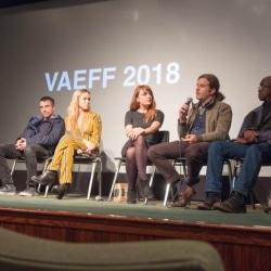 VAEFF 2018 Arist Q&As